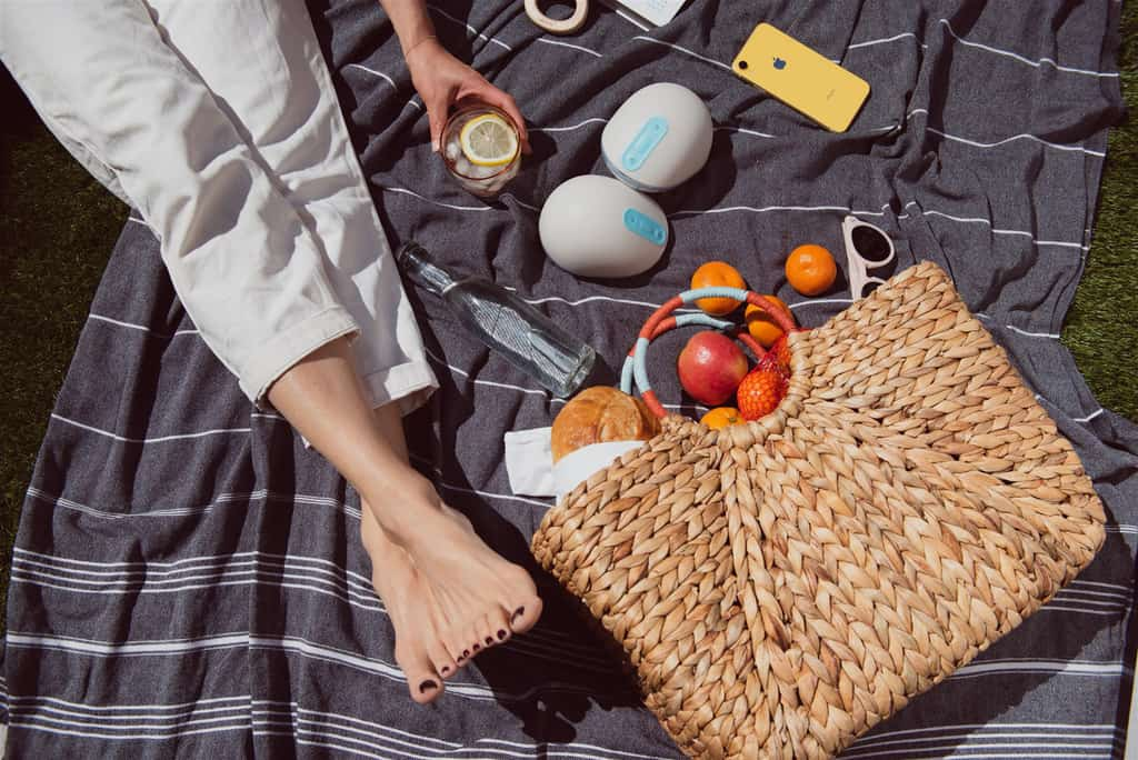 summer picnic with fruits and willow breast pump